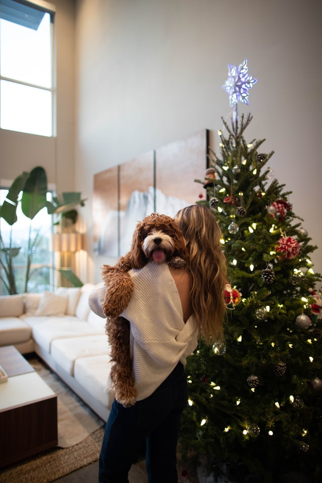 lady carrying a dog in front of the christmas tree